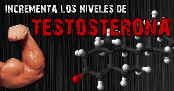 Como subir el nivel de testosterona en el hombre de forma natural
